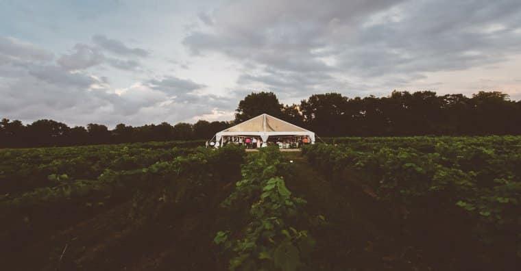 Vineyard Venue